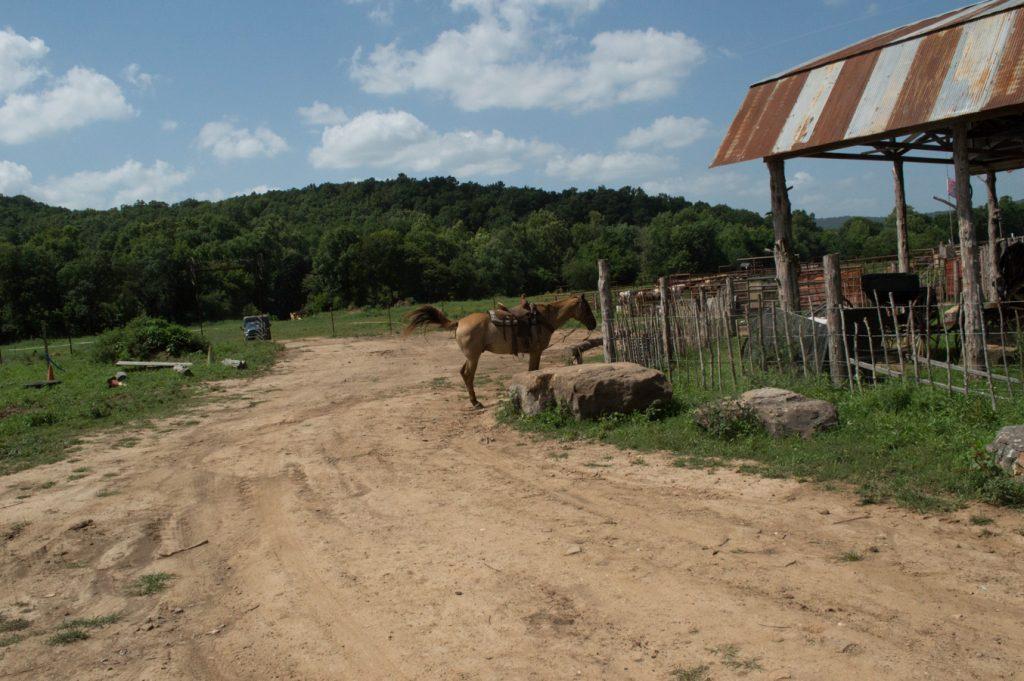 ranczo