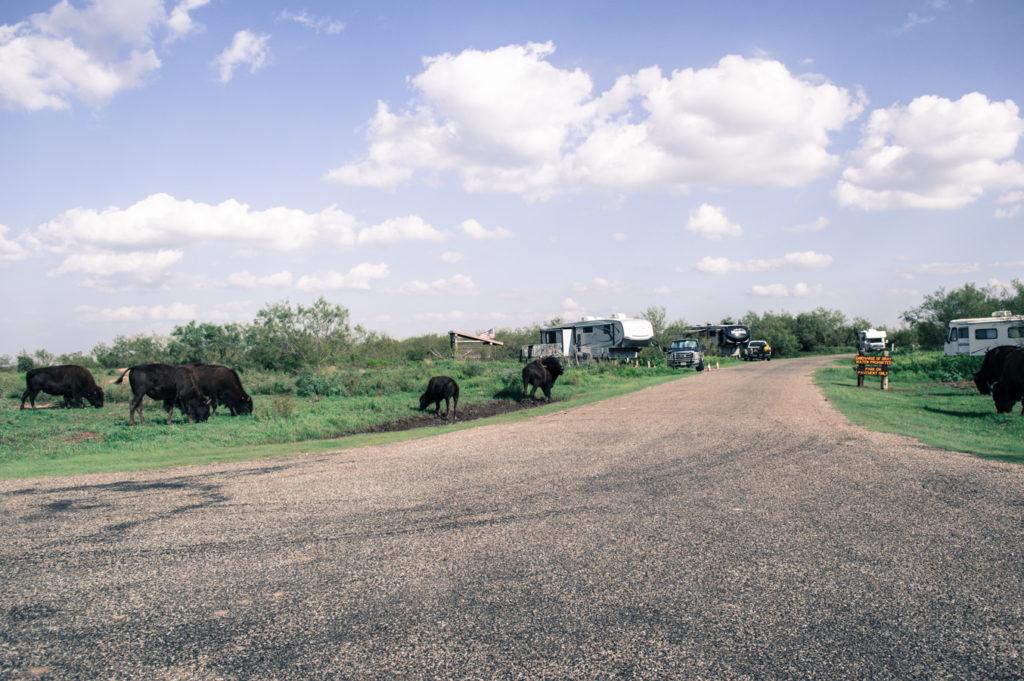 caprock teksas